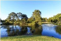 Gympie Duck ponds Image